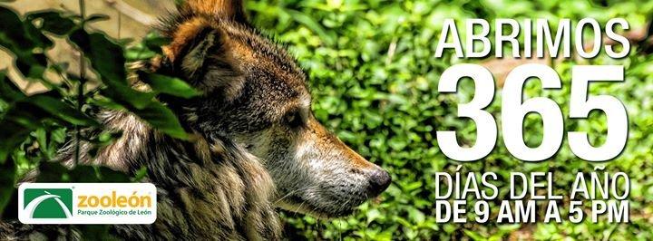 Zoológico de León cover
