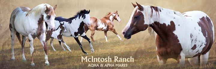 McIntosh Ranch LLC cover