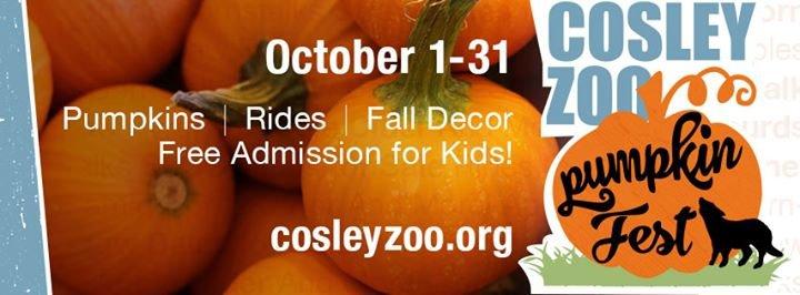 Cosley Zoo cover