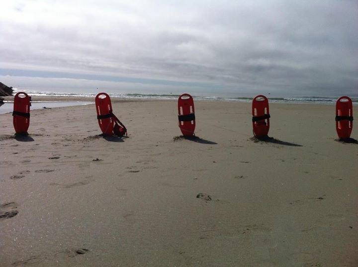 Wells Ocean Rescue cover