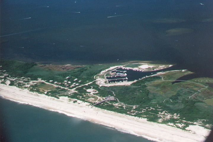 FFINS/Friends of Fire Island National Seashore cover