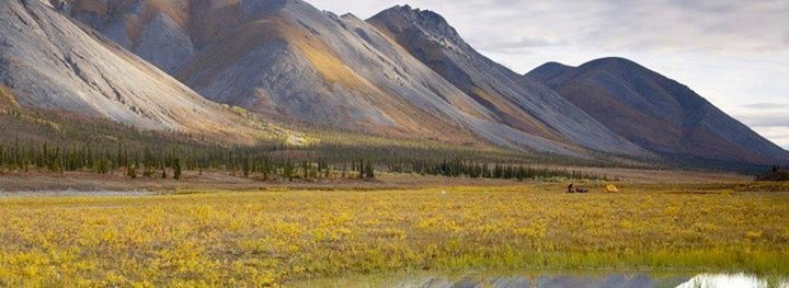 USFWS Arctic National Wildlife Refuge cover