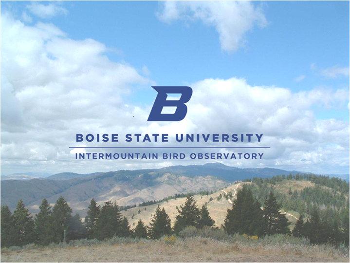 Intermountain Bird Observatory cover
