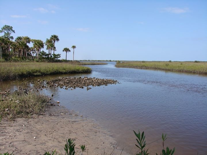 Florida Sea Grant Extension-NE Florida cover