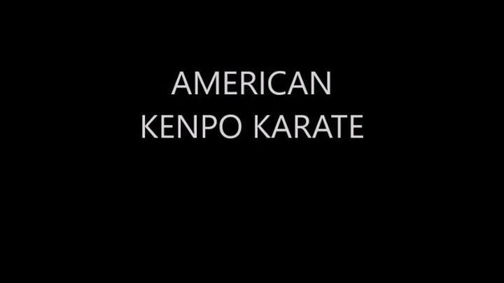 American Kenpo Institute cover