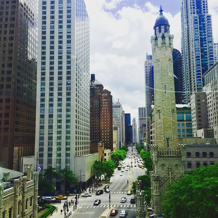 The Magnificent Mile cover