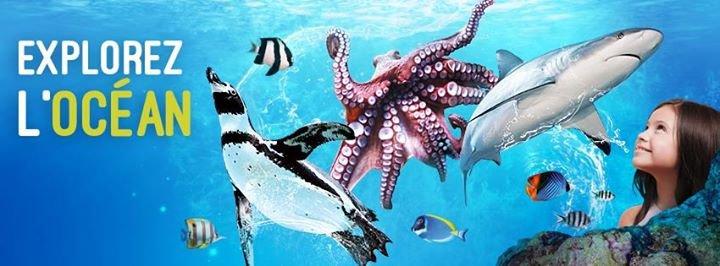Aquarium Mare Nostrum cover