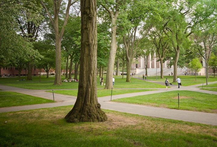 Program on Negotiation at Harvard Law School cover
