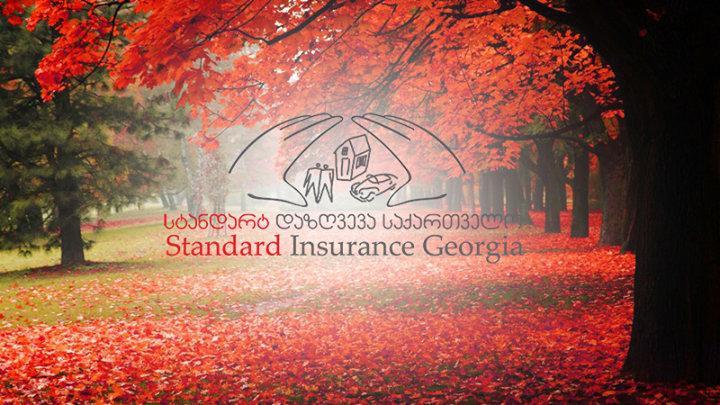 Standard Insurance Georgia cover