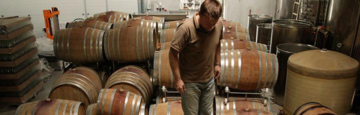 Weinbau Uwe Schiefer cover