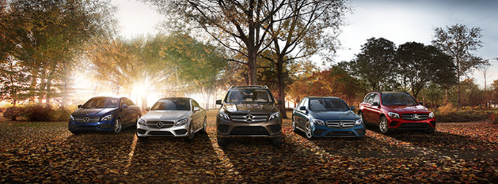 Mercedes-Benz of South Charlotte cover