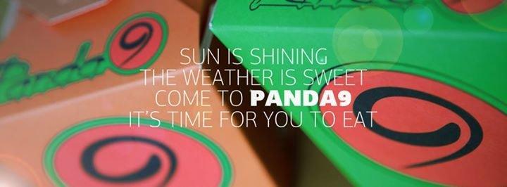 Panda 9 cover