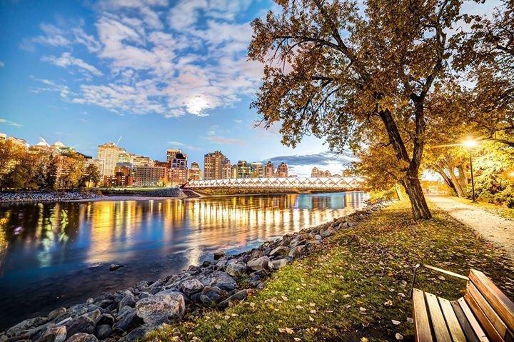 Calgary Economic Development cover