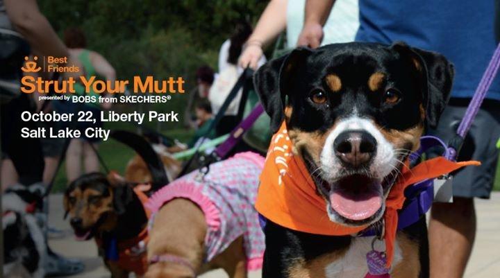 Best Friends Animal Society - Utah cover