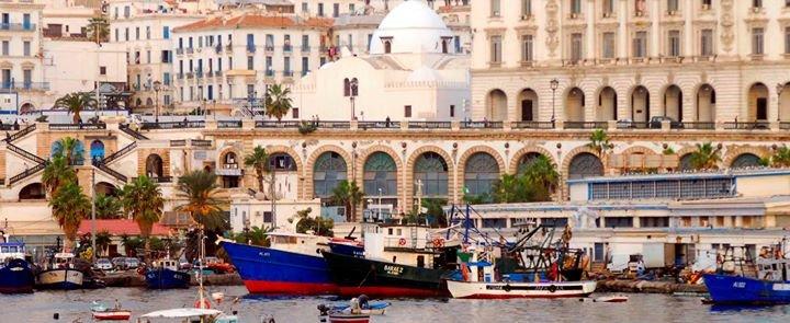 Ambassade de France en Algérie cover