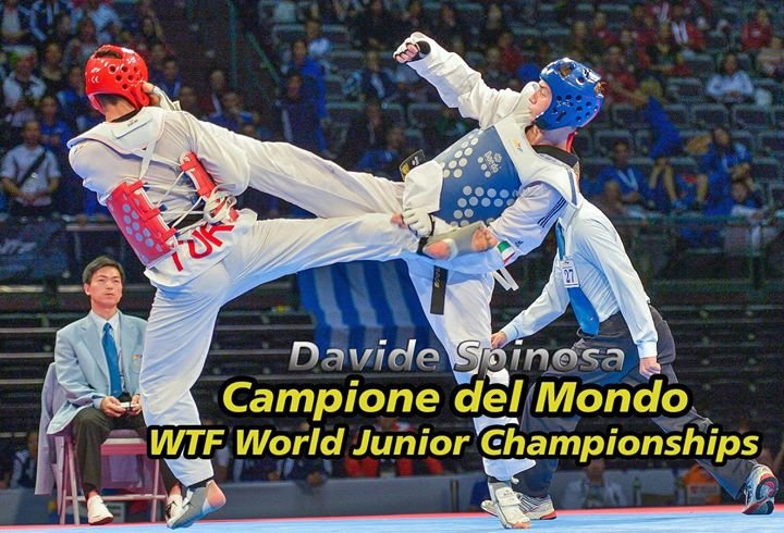Fita - Federazione Italiana Taekwondo cover