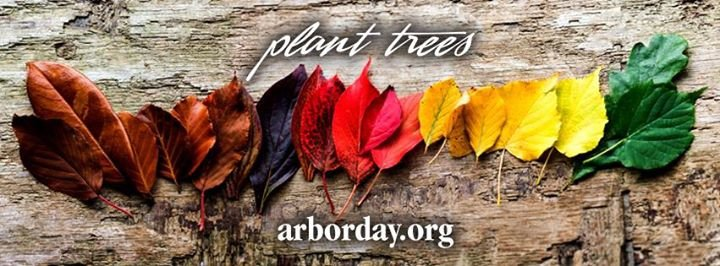 Arbor Day Foundation cover