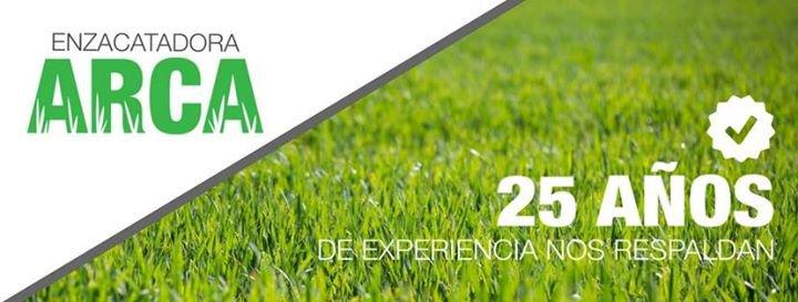 Zacate ARCA (Enzacatadora) cover