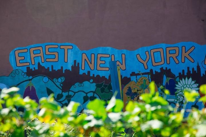 East New York Farms! cover