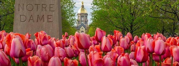 Notre Dame Alumni Association cover