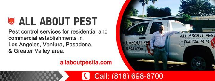 All About Pest  cover
