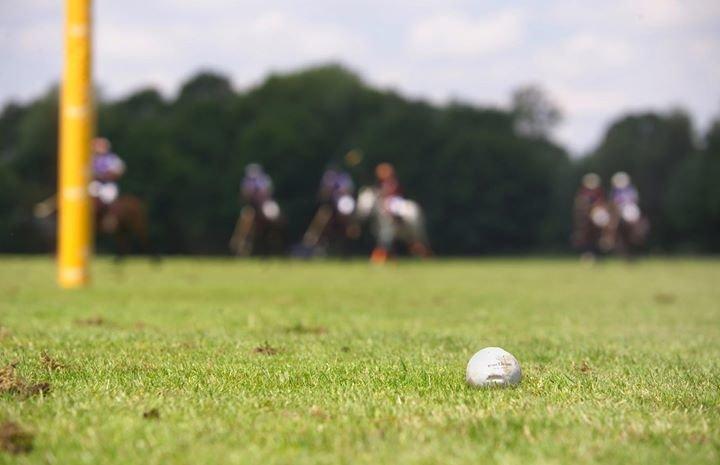 Rhein Polo Club Düsseldorf e.V. cover