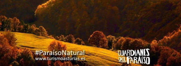 Turismo Asturias cover