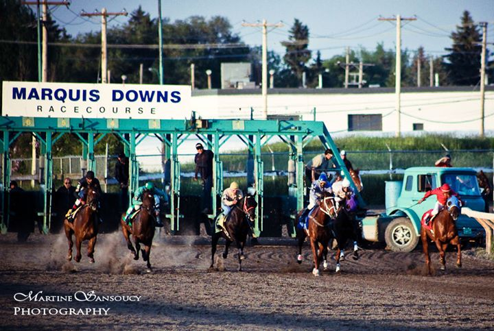 Marquis Downs cover