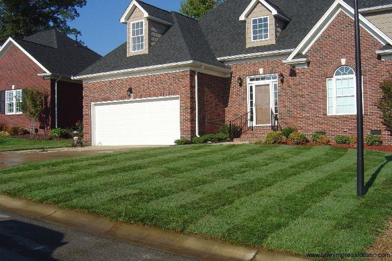Lawn Impressions cover