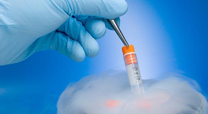 Embryo Banking Australia cover