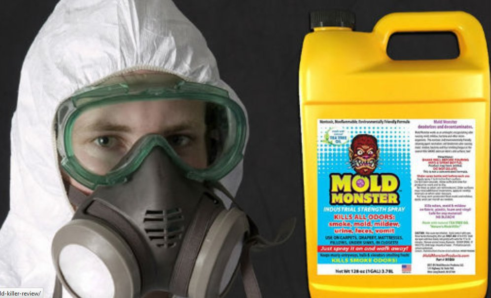 Let's Remove Mold cover