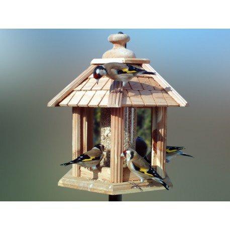 Oisillon.net, votre spécialiste en équipements et produits pour les oiseaux du jardin  cover