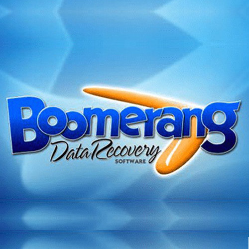 Boomerang Data Recovery cover