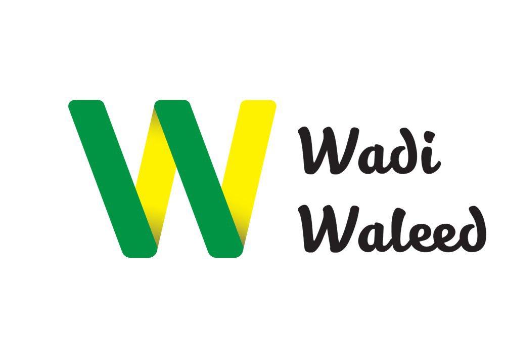wadiwaleed cover