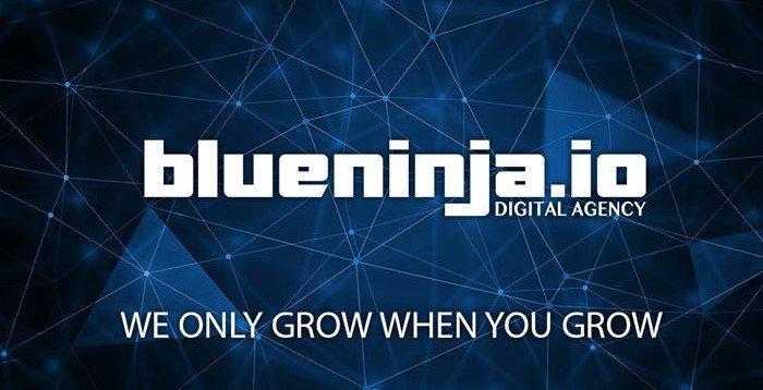 Blueninja.io cover