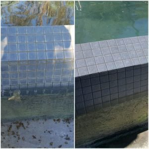 Specialties Aquatic Tile Cleaning cover