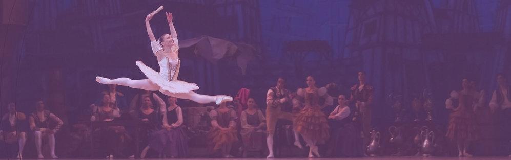 Escola de Dança Sandra Leite cover