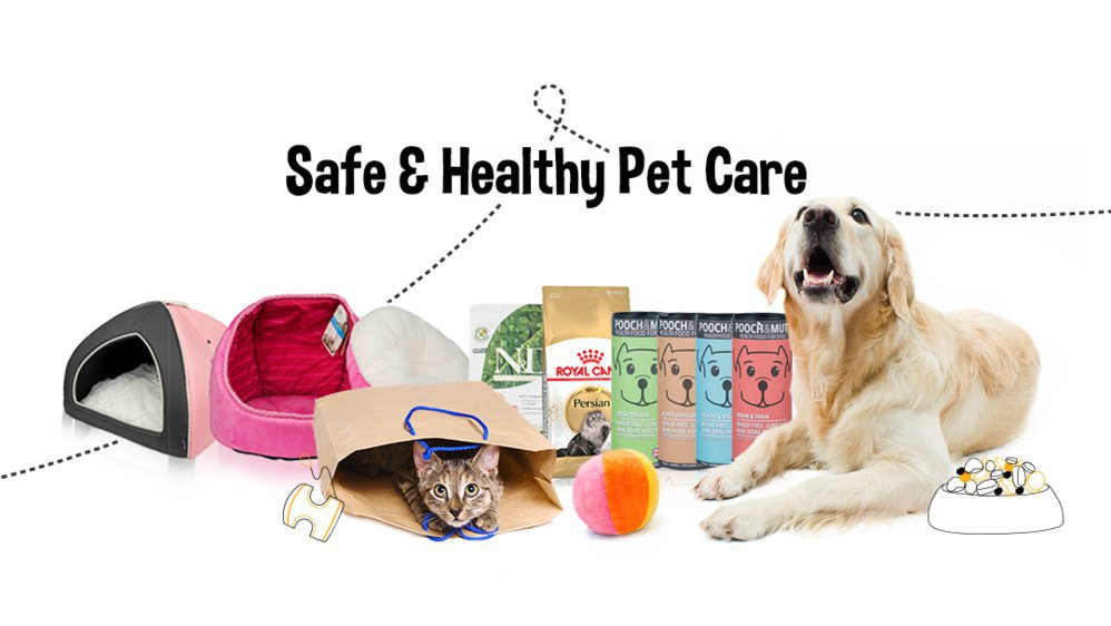 Chew Central - The Online Pet Supplies Store cover