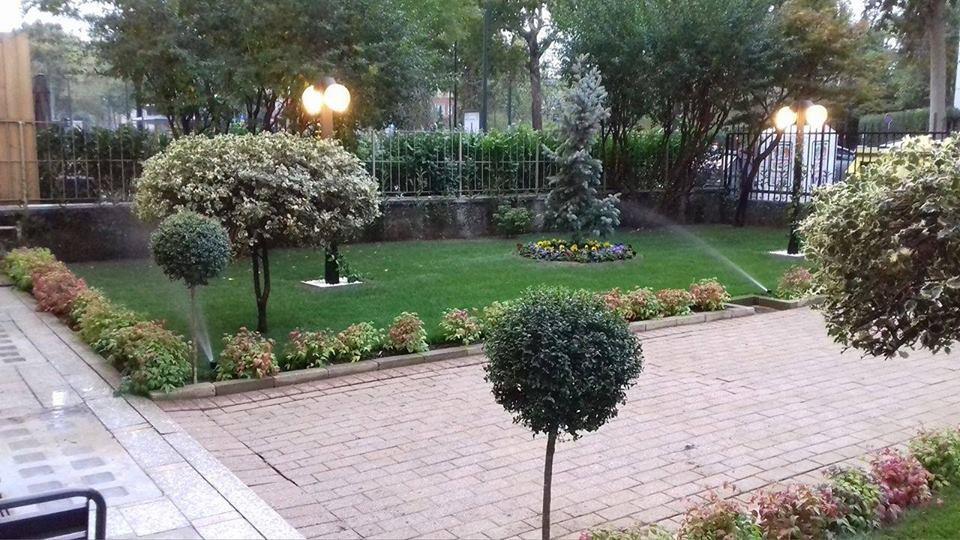 Tutto Verde Giardinaggio cover