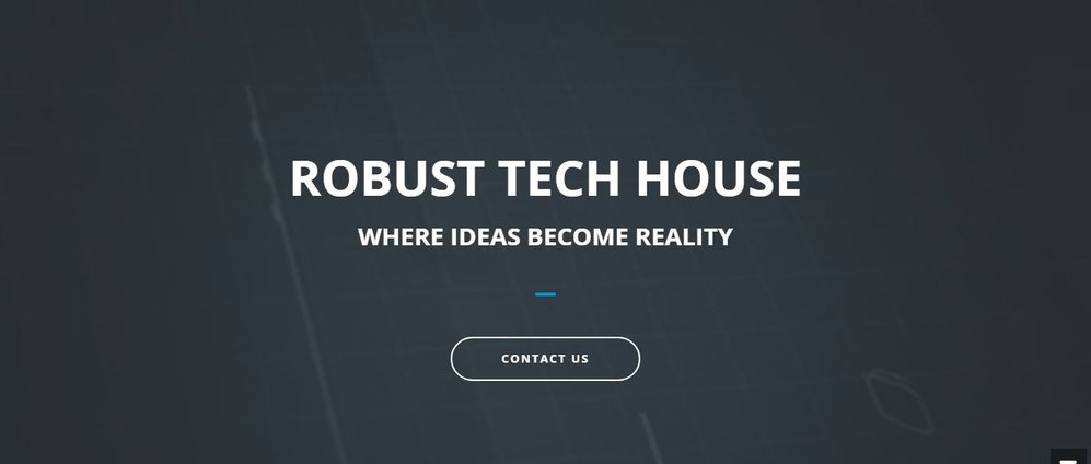 RobustTechHouse cover