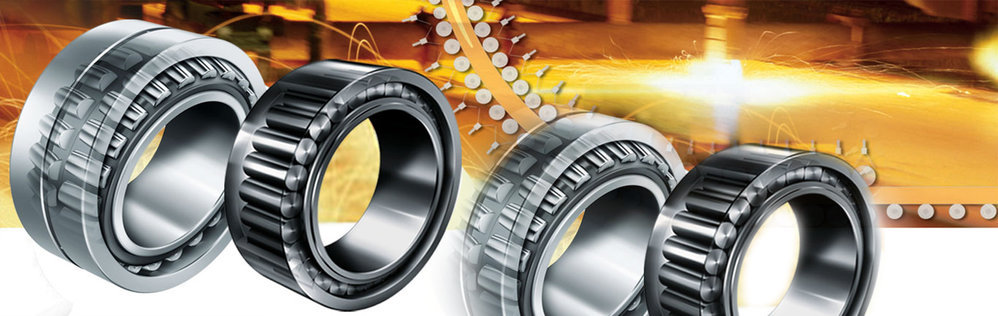 Roller Bearing India/Fagbearing cover