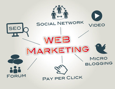 Internet Marketing Expert cover