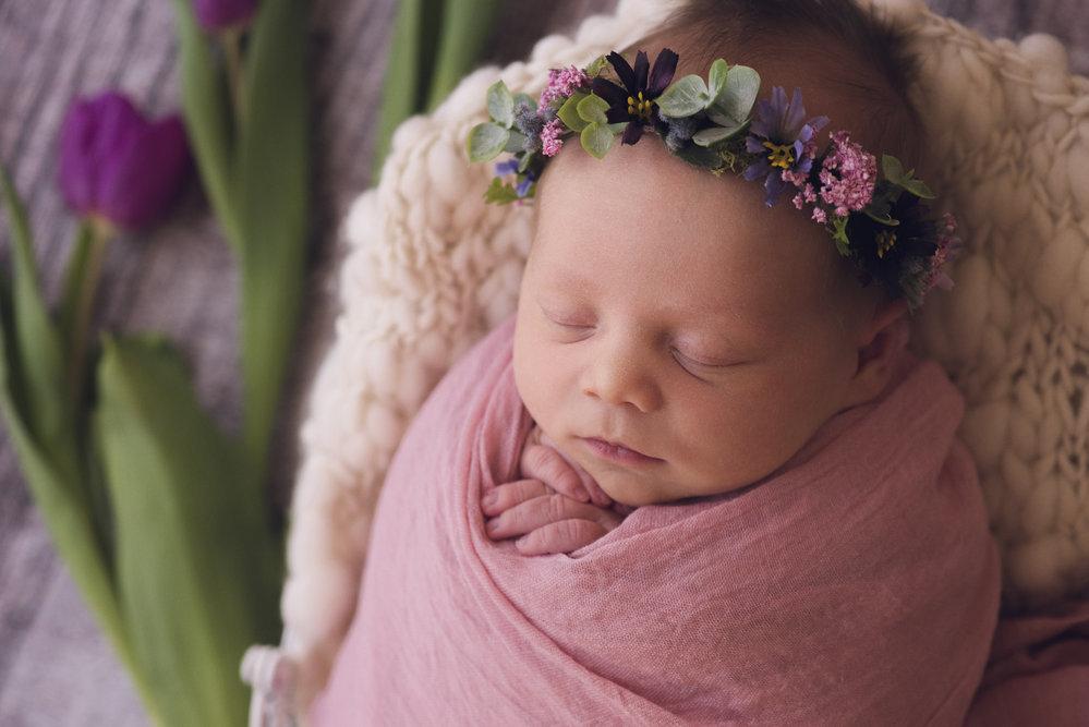 Sasha Conlan Photography specializing in Newborns cover