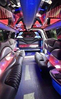 AO Limousine cover