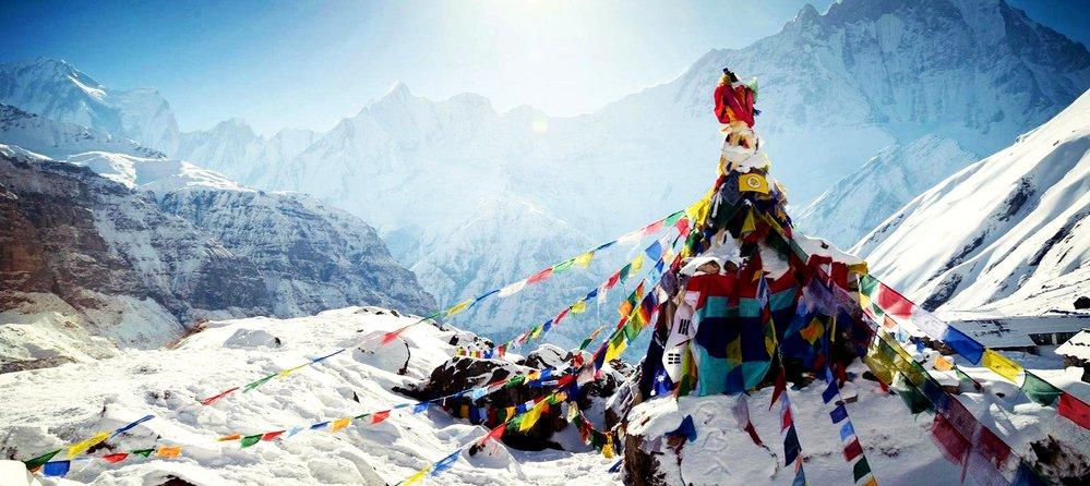 Royal Mountain Trekking Pvt. Ltd. cover