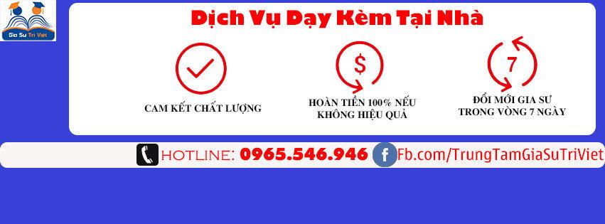 Trung Tâm Gia Sư Trí Việt cover