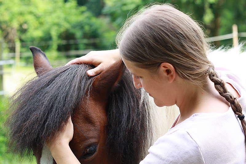 Tierärztin Dr. Barbara Stowasser cover