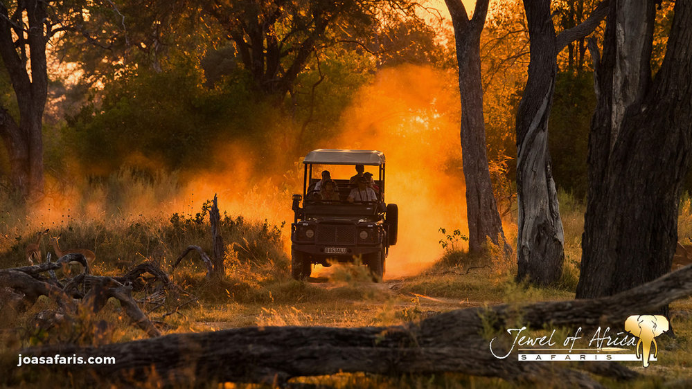 Jewel of Africa Safaris cover