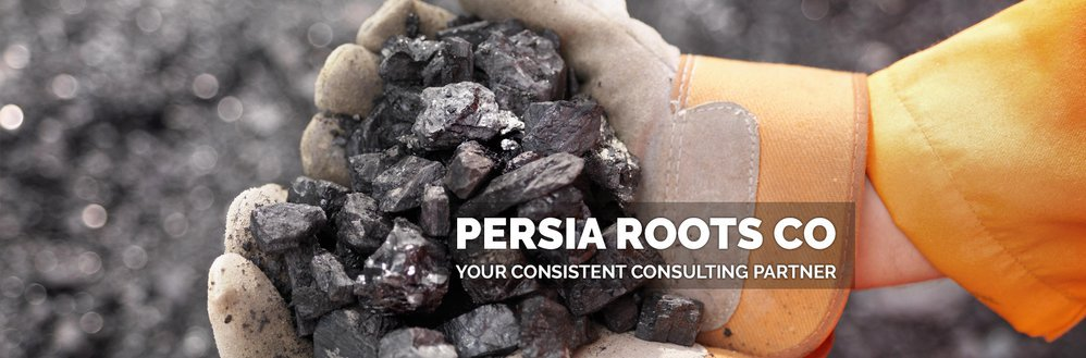 Persia Roots Co cover