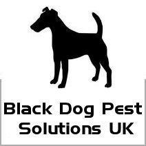 Black Dog Pest Solutions UK cover